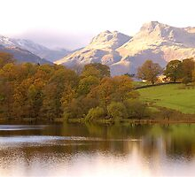 The Langdales and Loughrigg by Mike  Waldron
