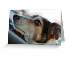 Eyes on Momma Greeting Card
