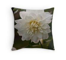 Mary Moriarty Throw Pillow