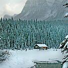 Winter Wonderland 3 by Danielle Girouard