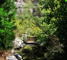 A Teeny Tiny Bridge by Laurie Search