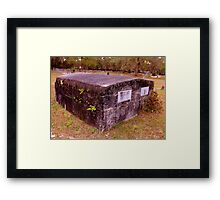 Touch of Fern Crypt Artistic Photograph by Shannon Sears Framed Print