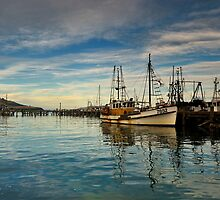 Otago Harbour by ColinGaleImages