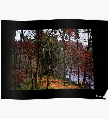 Late Autumn en route to High Force Waterfall Poster