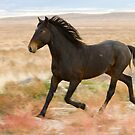 High Stepping Stallion by Kent Keller