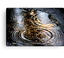 Rain Puddle in Autumn Canvas Print