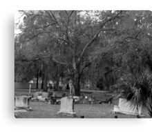 Graves of Peace Artistic Photograph by Shannon Sears Canvas Print