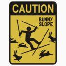 CAUTION: Bunny Slope by Jenn Inashvili