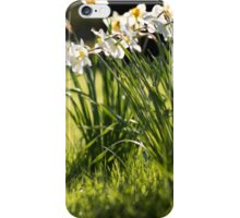 George II iPhone Case/Skin