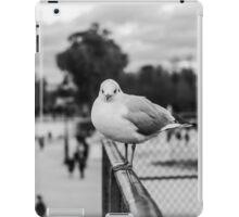 (II) Perched seagull in Jardin des Tuileries, Paris, France iPad Case/Skin