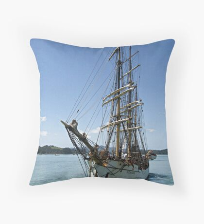 Picton Castle at the end of the voyage........! Throw Pillow
