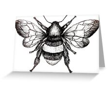 Black and White Bumble-Bee drawing. Greeting Card