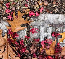 Autumn Bric-a-Brac by Nevermind the Camera Photography