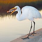 Great White Heron with dinner by Leon Heyns