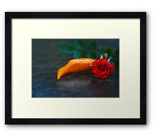 Spicy & Aromatic Still LIfe Framed Print