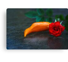 Spicy & Aromatic Still LIfe Canvas Print