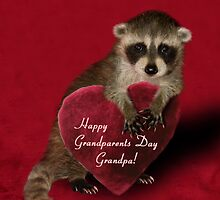 Grandparents Day Grandpa Raccoon by jkartlife