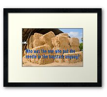 Who was the one who put the needle in the haystack anyway? Framed Print
