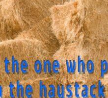 Who was the one who put the needle in the haystack anyway? Sticker