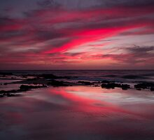 RED REFLECTIONS by robcaddy
