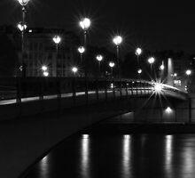 Pont de l'Alma, Paris, France at night by Olivier Sohn