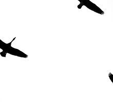 Flight by Lynn Armstrong