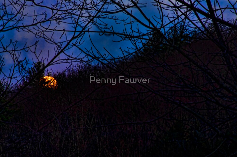The wee hours of morning by Penny Rinker