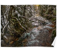 Upper Soda Creek ~ Snow ~ Poster