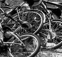 Bikes at the Beach by Hope Ledebur