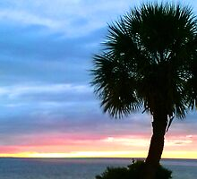 Sunset at Green Key, New Port Richey, FL by Ellen Turner