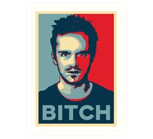 Pinkman, Bitch! Art Print