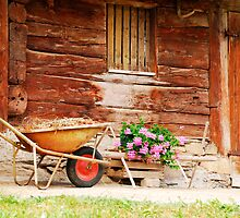 Rusted Wheelbarrow in Front of Wooden Farm House by jojobob