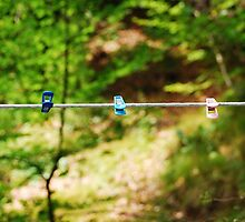 Plastic Pegs on Line by jojobob