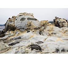 Large Tafoni Face and Seagulls Photographic Print