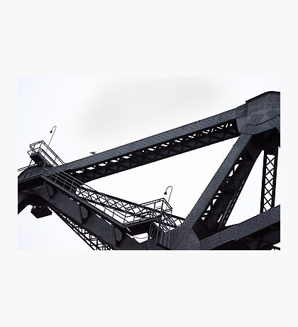 Third Street Bridge and Seagull Photographic Print