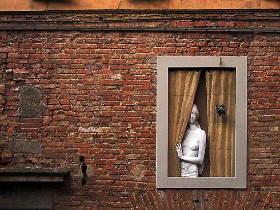 Donna alla finestra, Siena, Italy by David Carton