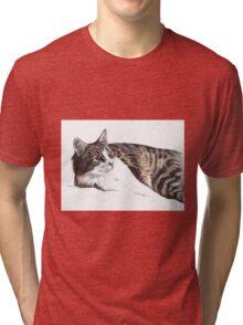 Feelin' Lazy Tri-blend T-Shirt