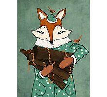 Blue eyes fox Photographic Print