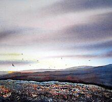 North Yorkshire Moors at Dawn by Glenn Marshall