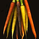 Rainbow Carrots by Barbara Wyeth