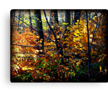 I love the crisp autumn air.  Canvas Print