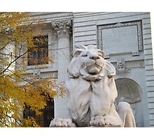 Classic Lion Sculpture, New York Public Library, New York City Photographic Print