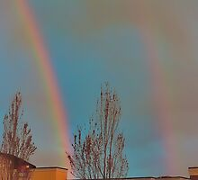 Over the Rainbows by Cee Neuner