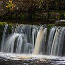Richmond Waterfalls, Yorkshire, UK by Gordon Holmes