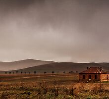Pastoral Storm by Jenni Tanner