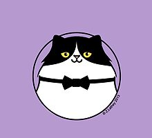 Sophisticated Black & White Cat by zoel