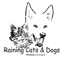 Paws4Critters Raining Cats & Dogs by paws4critters