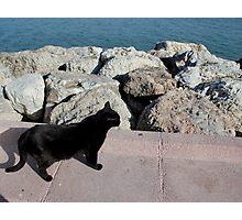 Gato beach Photographic Print