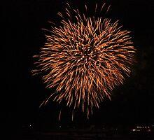 november Firework  by Perggals© - Stacey Turner