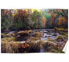 Chattooga River Fall Colors Poster